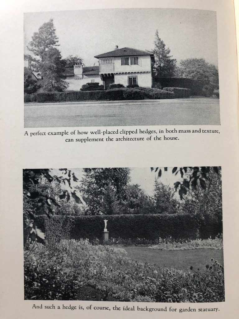 """Illustrations from Donald Wyman's 1938 book entitled Hedges, Screens and Windbreaks. The top picture is a house with hedges in front and the caption """"A perfect example of how well-placed clipped hedges, in both mass and texture, can supplement the architecture of the house."""" The picture below is a garden with a statue in it that has the caption """"And such a hedge is, of course, the ideal background for garden statuary."""