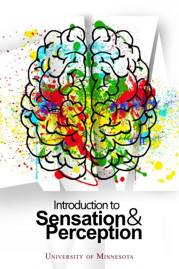 Cover image for Introduction to Sensation and Perception